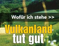 Landtagswahlen 2010